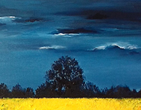 Field of gorse under a stormy sky