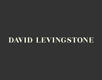 David Levingstone