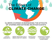Climate Change Infographic for WhatsYourImpact.org