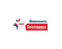 Escudos Campeonato Nacional Scotiabank 2015-16 // Logos