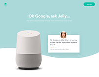 Google Home Launch Partner