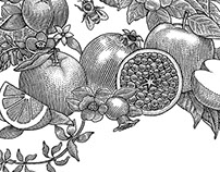 Woodcut illustration fruits and flowers
