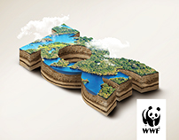 WWF - Save the rainforest.