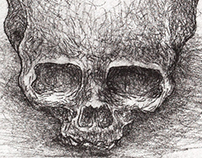 Study of a skull 1