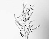 Tattoo Commission: Aquarius Ink Illustration