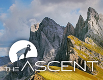 The Ascent website & branding
