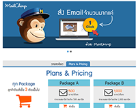 MailChimp Project