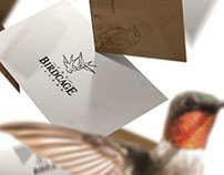 The Birdcage Tavern Identity