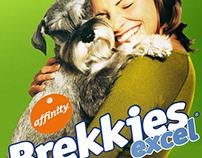 Diseño Brochure y flyer Affinity Brekkies Excel Mini