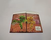 Roche Brochure