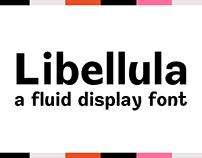 Libellula | Display Font | Thesis Project