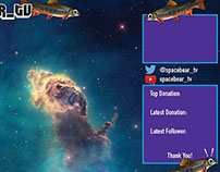 Twitch.com/spacebear_tv page art and overlay
