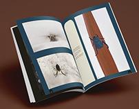 Mise en page n°170 de la Camosine