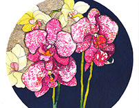 Gold Orchids Illustration
