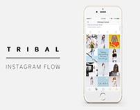 Tribal Sportswear - Instagram Layout