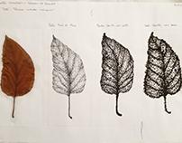 Pontilhismo e linhas - Folhas