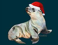Christmas fur seal