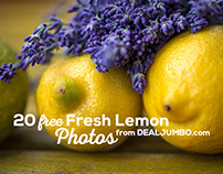 20 Free Lemon Photos