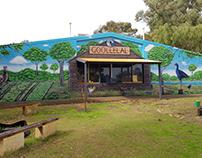 Goolellal Primary School Mural