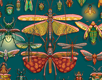 Insects of the future
