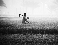black and white-field