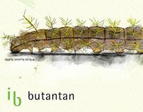 Instituto Butantan | Ilustração