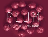 Plum - Fun Free Font
