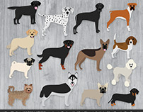 Dog Breed Illustration Series