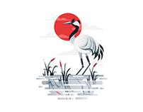 Crane Illustration - Personal Project