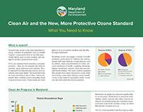 Information Sheet Design - MDE Redesign