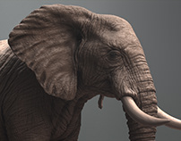 African Elephant Sculpture