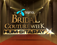 Bridal Couture Week 2014 November