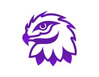 Desert Falcon Mascot