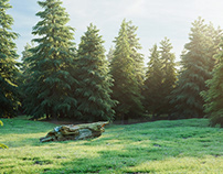 Woodland | CGI