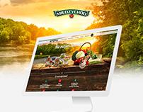 Twój Międzychód / web & mobile design