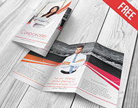 Corporate - Free PSD Trifold Brochure Template