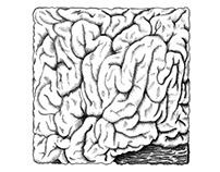 PAPER | brain box