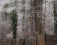Le mur/ The wall