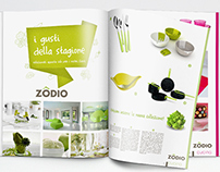 Zodio IT brand identity project, competition