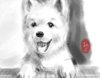 MY DOG蒙蒙