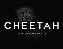 CHEETAH - Sans Serif Font Family