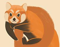 Endangered Animal Alphabet (full)