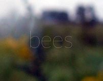 bees | sequence of shots