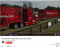 Live Oak International 2016 Budweiser Clydesdales