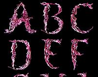 Organic Alphabet