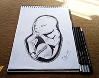 Baby inside Womb Charcoal Pencil Drawing| by #SyedArt