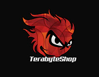Frontend - TerabyteShop