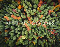 AUTUMN COLORS / Work for Visit Trentino