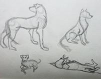 Drawing Portfolio - Life Drawing