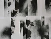 Collage Study